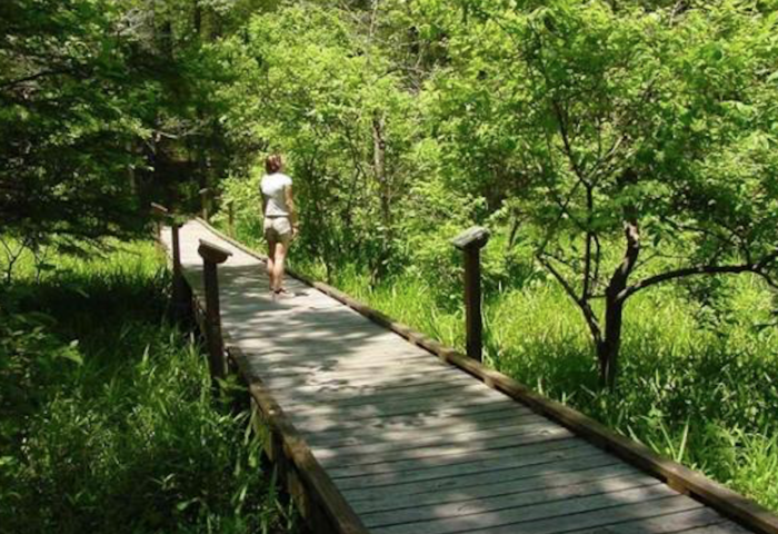 4. Louisiana State Arboretum Trail, Ville Platte