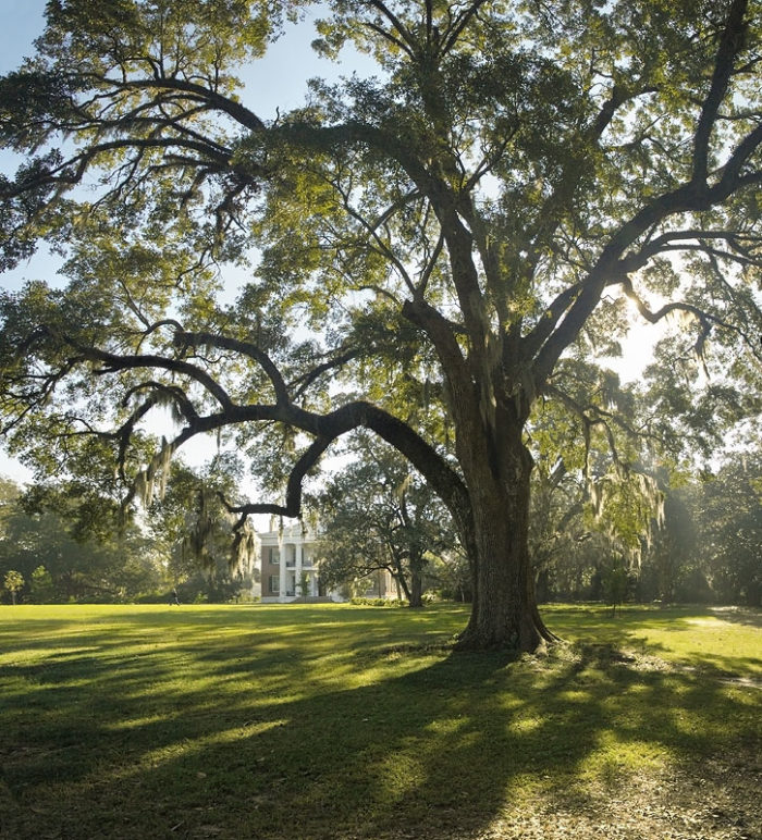 Melrose Plantation is found in Natchitoches Parish, on LA 119 off of LA 493 in Melrose, LA.