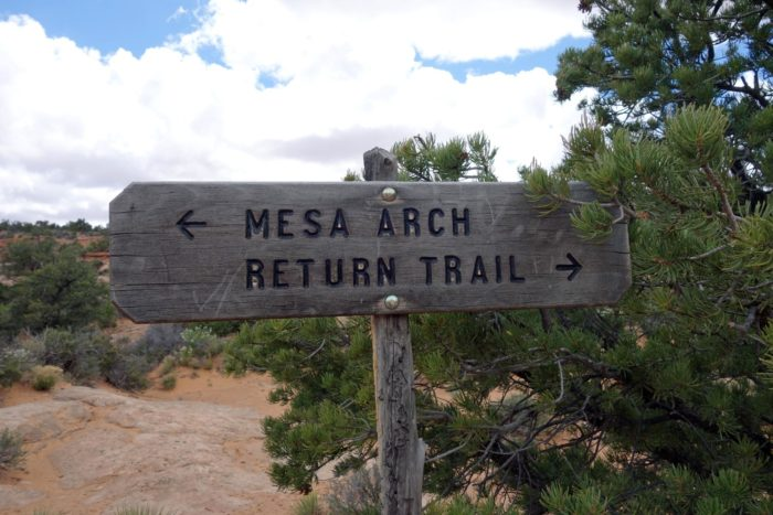 The Mesa Arch trail is a .7-mile trail that makes a loop to the arch and back. The trailhead starts and ends at the parking lot.