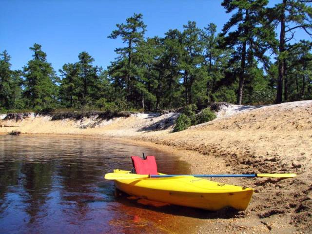 4. Paddle The Pine Barrens