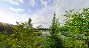 Visit Minnesota's Largest State Forest For A True Wilderness Experience