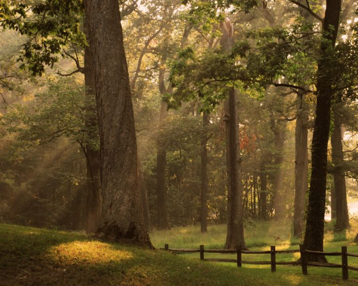 8. Mounds State Park - Anderson