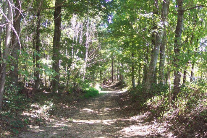 1. Natchez Trace Trail, Tishomingo State Park