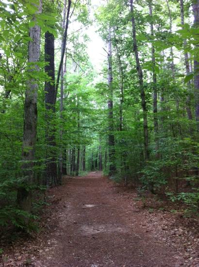 2. Wall Doxey State Park