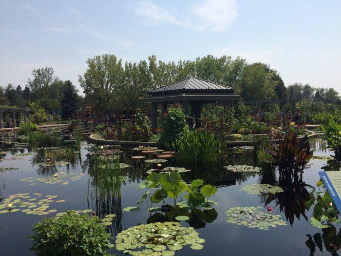 2. Denver Botanic Gardens (Denver)