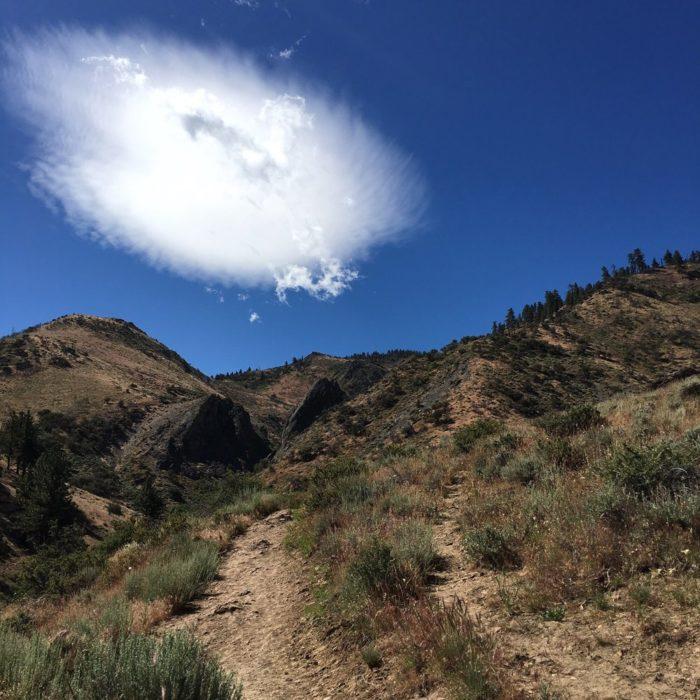 2.  Hunter Creek Trail - Reno