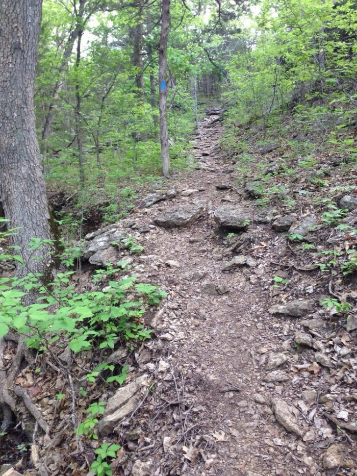 Elk River Is One Of The Most Enchanting Hiking Trails In