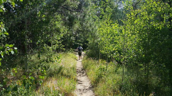 6. Marlette Lake Trail - Carson City