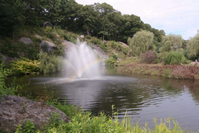The cemetery also features a beautiful pond, complete with fountains.
