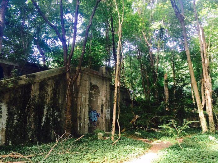 7. Muttontown Preserve - Syosset