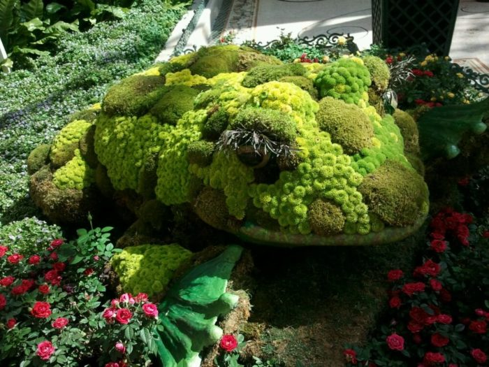 Creating magical masterpieces, the garden is made up of 80,000 blooming plants.