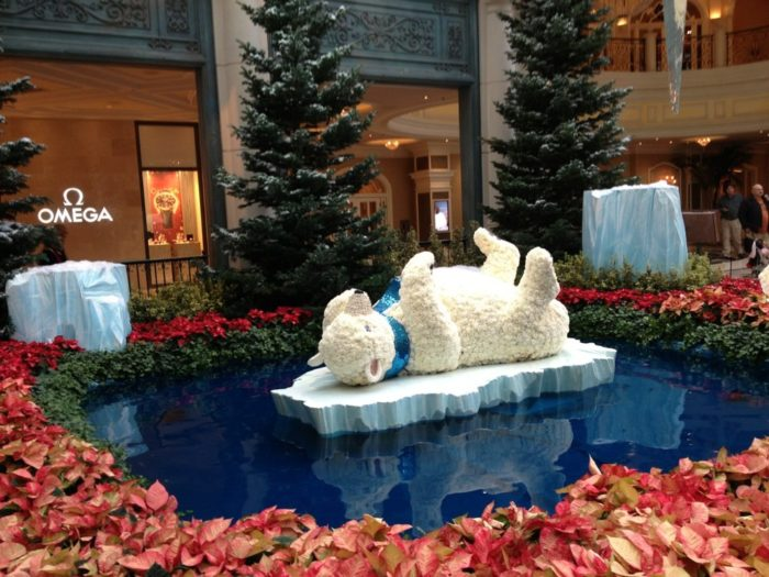 After that, you can stop in to see your favorite polar bears during the Holiday Show starting December 1st, continuing through until January 6th!