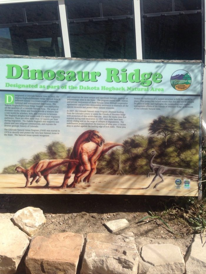 Named a National Natural Landmark in 1973, Morrison's Dinosaur Ridge is one of the world's most famous fossil sites, first producing the skeletons of a few well-known dinosaurs (including the Stegosaurus) back in 1877.