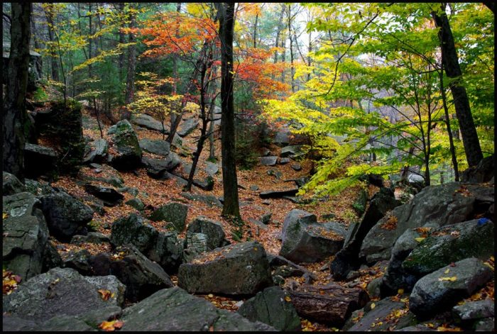 You won't regret a visit to one of Massachusetts' most dramatic hiking spots. Unless you forget to bring your camera.