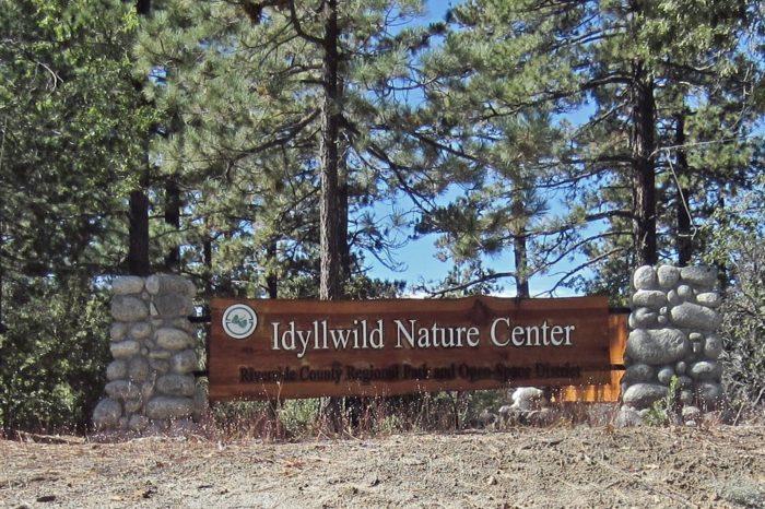 9. Idyllwild Nature Center