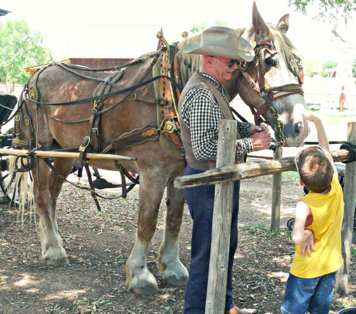 11. Four Mile Historic Park