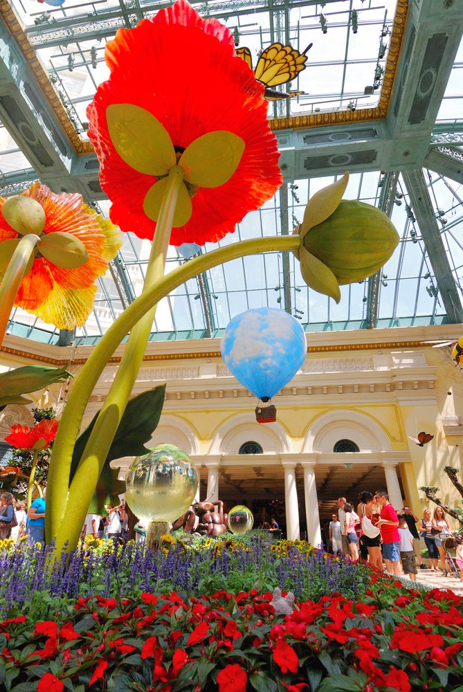 The gardens undergo a transformation every season. Now through September 10th you can experience the Under The Sea display for summer.