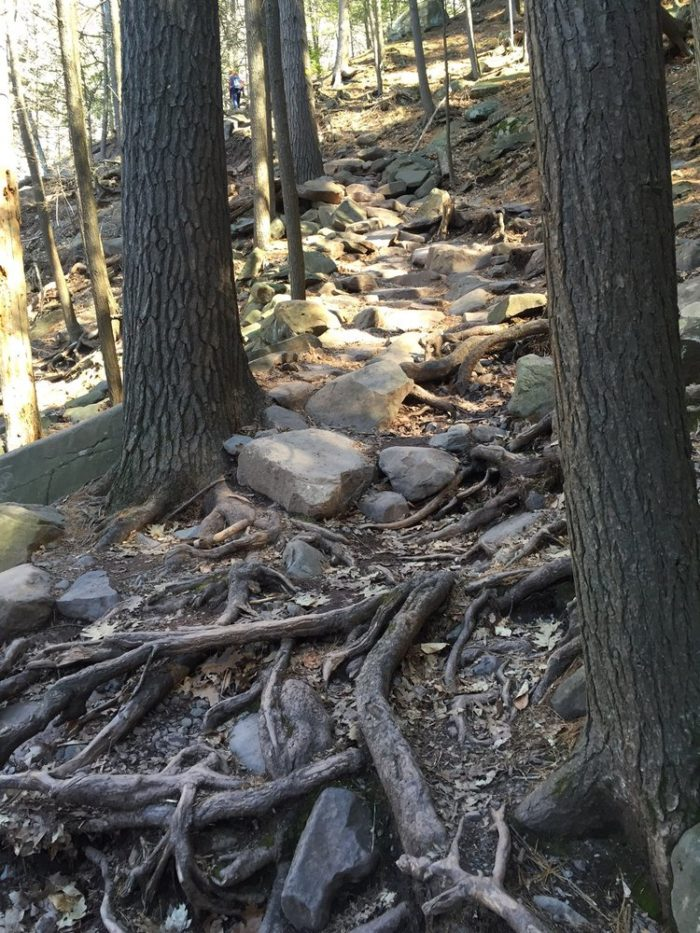 Explored by visitors of all ages, the hike is quick and considered easy by most who walk it but... be sure to wear good shoes!