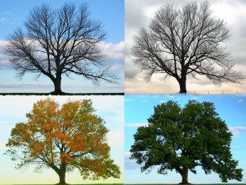 6. You've experienced ALL four seasons...in one week.