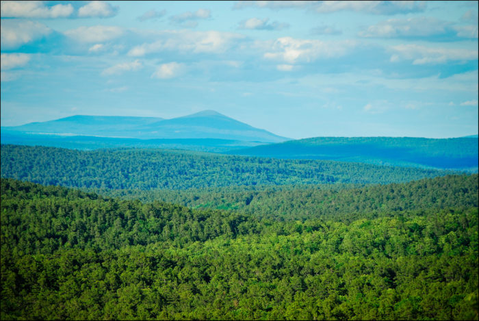The forest houses the Winding Stair Mountain National Recreation Area located in LeFlore County, Oklahoma.