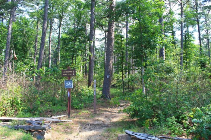 An extensive trail system is located in the forest and offers lots of hiking options for those looking to get outside and enjoy the fresh air.