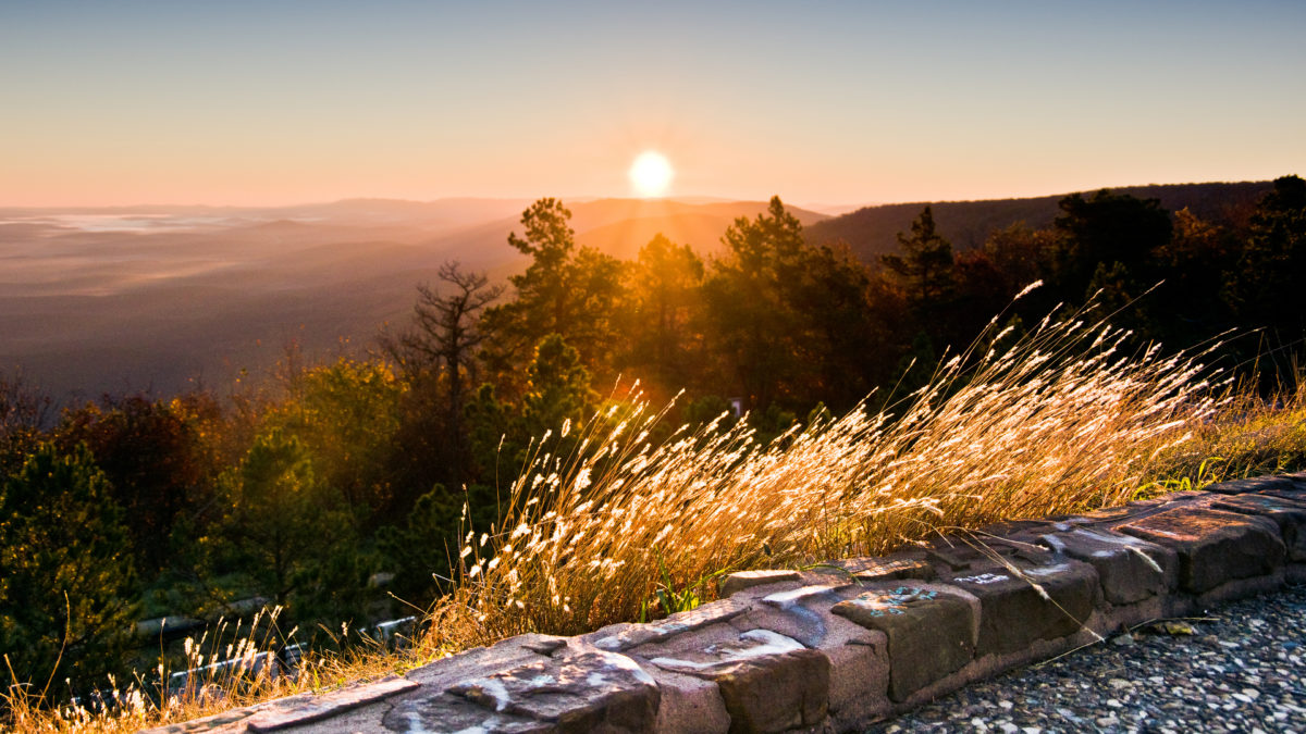 visit the ouachita national forest in oklahoma for
