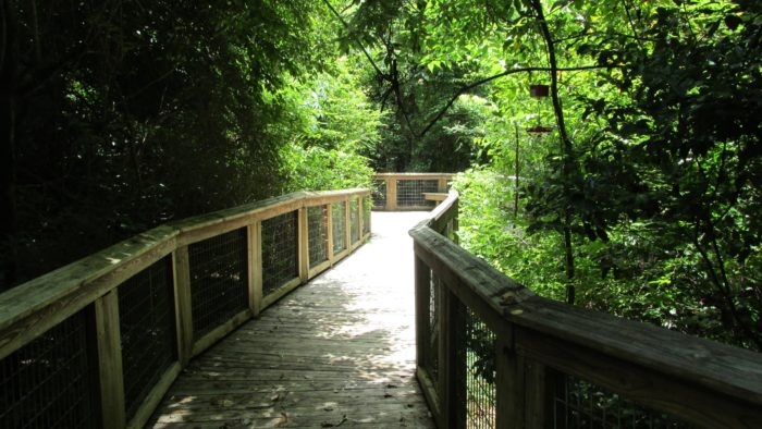 7. Bluebonnet Swamp Nature Center, Baton Rouge
