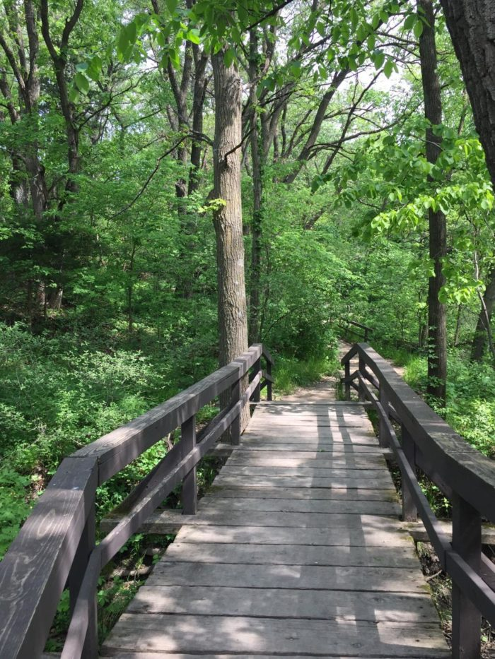 9. Nature Trail, Platte River State Park