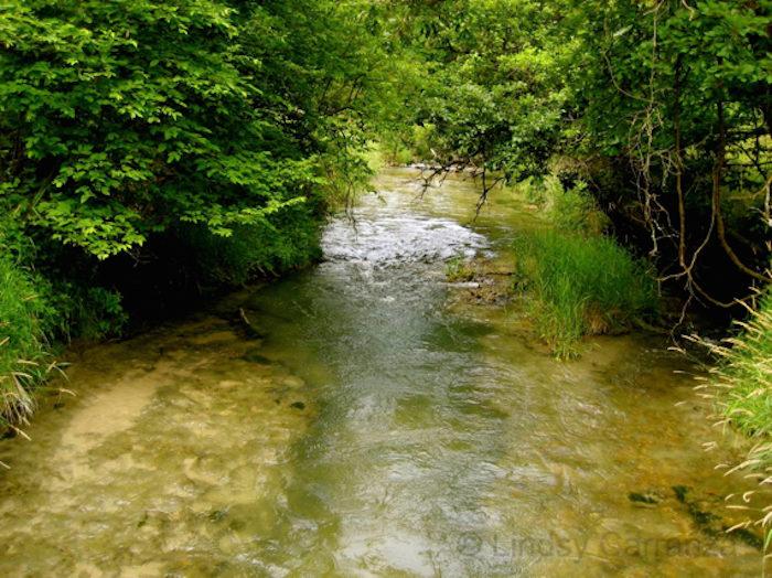 5. Long Pine Creek, near Long Pine