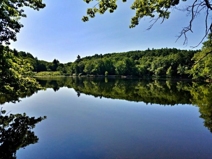 If you choose to walk the trails, you'll find multiple spots along the pond to slip into the water and cool off.
