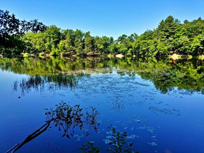 The pond is fed by Mill River, which spills over a dam and creates a gorgeous cascade.