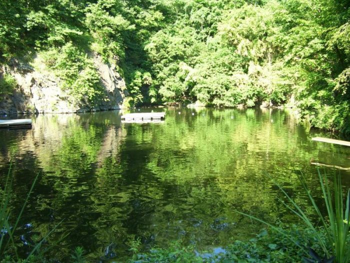 quarry swimming hole in mercer county new jersey