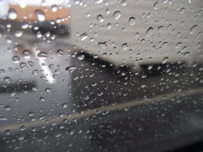 14. DC averages 39 inches of rain every year, which is more than Seattle.