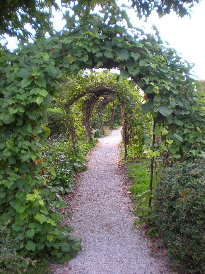rose garden arbor lodge