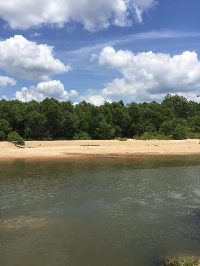 And of course the beaches around this area are some of the best on any creeks in Louisiana.
