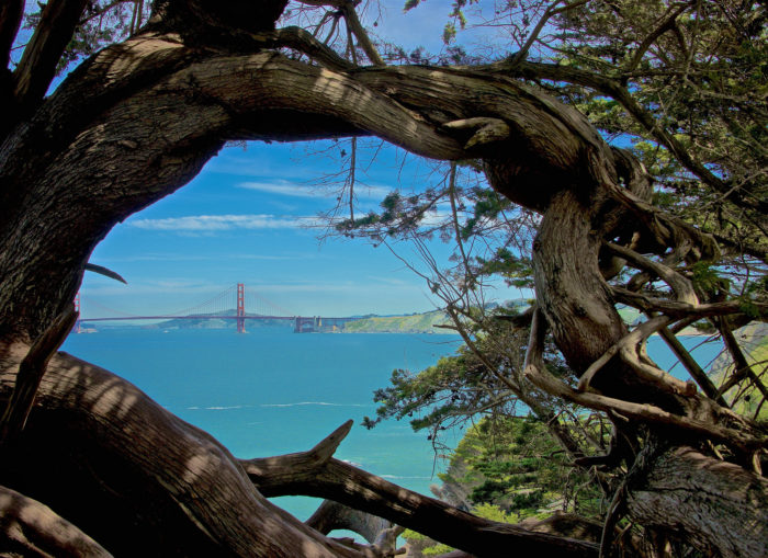 8. The Golden Gate from a different angle.