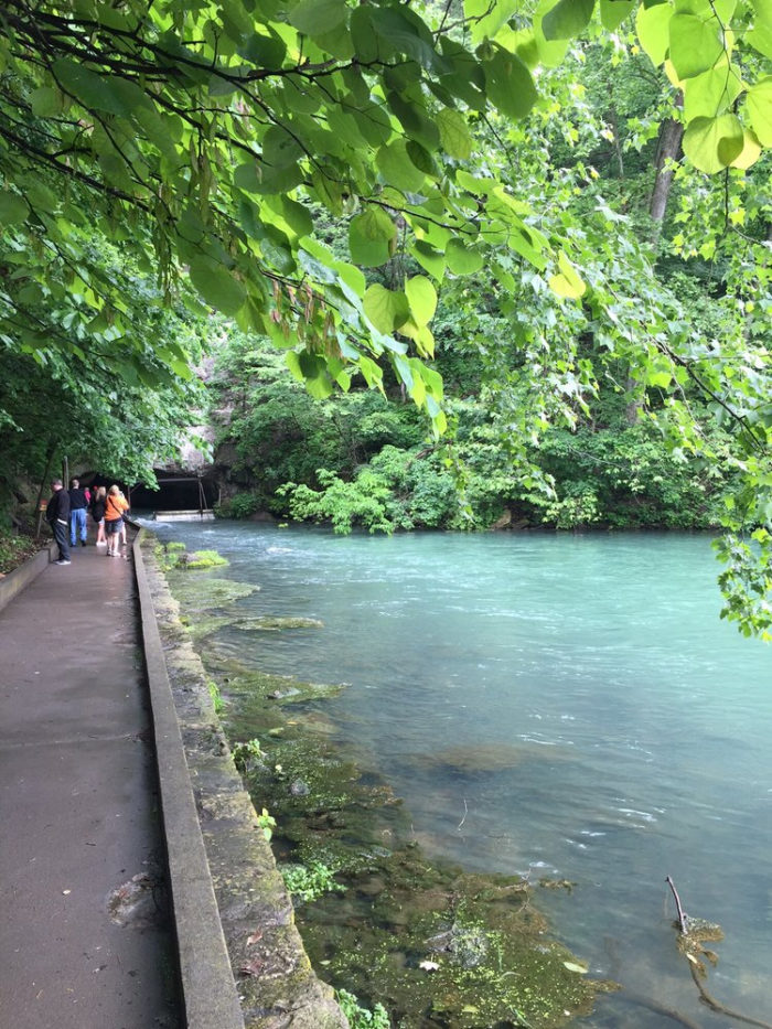 Have you seen the Roaring River Spring in person yet?