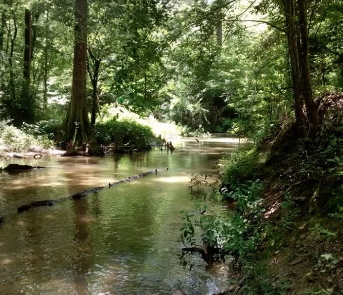 Can You Escape Tampa >> Visit Spring Creek in Central Louisiana to Escape From It All