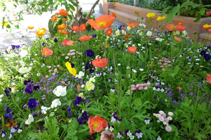 Temple Square employs seven full-time gardeners.