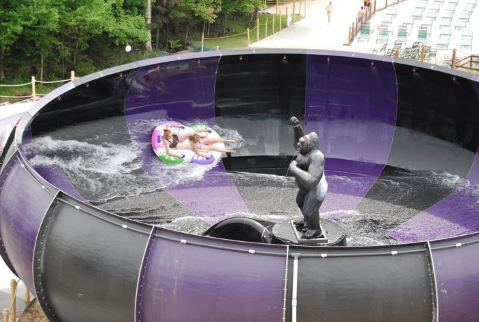 Since opening in the late 1950s, Enchanted Forest Water Safari has transformed over the last 60 years, becoming the ultimate New York water park.