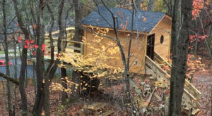 We Dare You Not To Love An Overnight In This Treehouse In West Virginia
