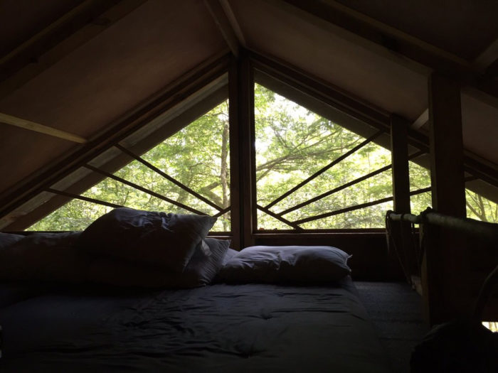 The treehouses have beds, pillows, kitchenware, a propane grill and candles.