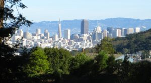 This Little Known Natural Oasis Is Hiding In San Francisco… And You're Going To Love It