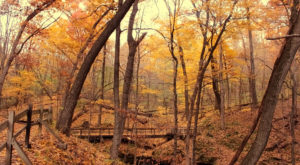 16 Marvelous Trails You Have To Hike In Iowa Before You Die