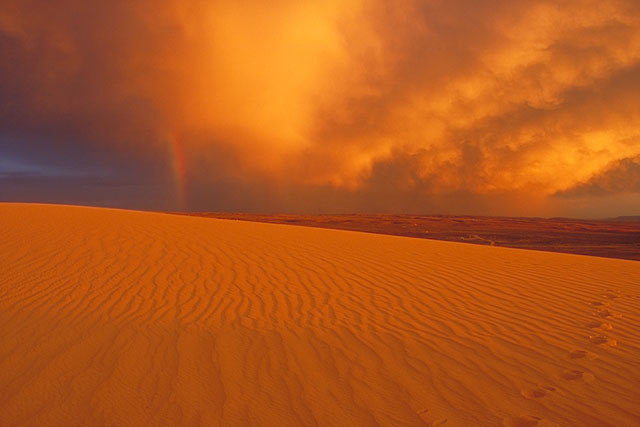Wyoming Is Home To The Largest Living Dune System In America