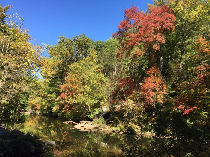 Embark on the scenic trail in Philadelphia's 1,800 acre Wissahickon Valley Park. Within that sprawling park lie an estimated 50 trails that all promise picture perfect views.