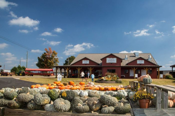 3. Tate Farms - Meridianville