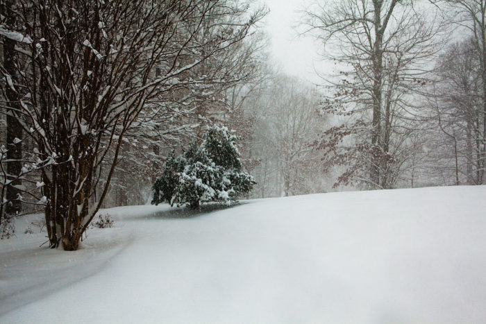 3. The Nor'Easter of 2009 - Christmas Storm