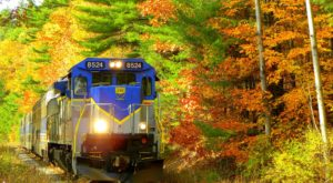 Take This Fall Foliage Train Ride Through Oregon For A One-Of-A-Kind Experience