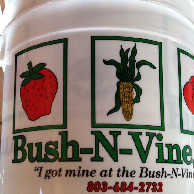 9. Bush-N-Vine Farm - York